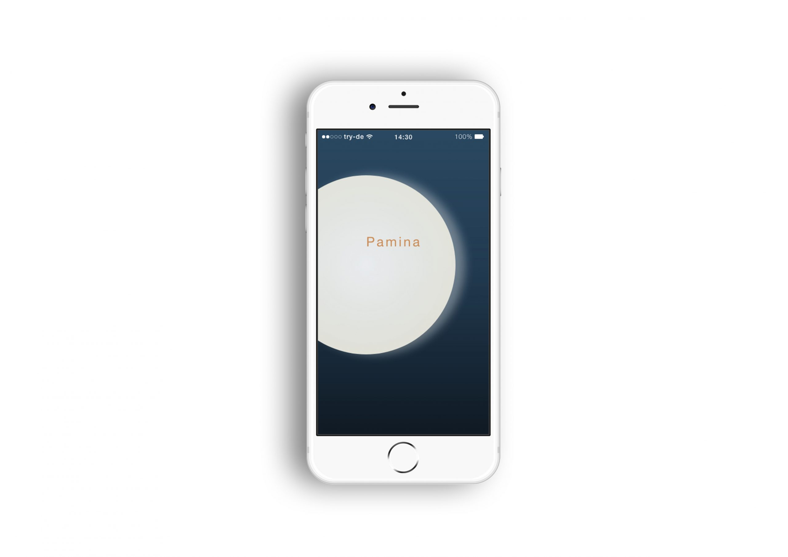 Screendesign der App Pamina